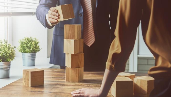 Development-growth-building-blocks-Copy
